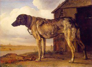 Uwiązany pies
